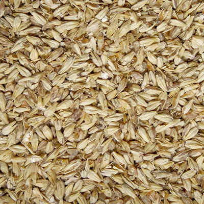 Pale Ale Malt (Briess) - 1 LB