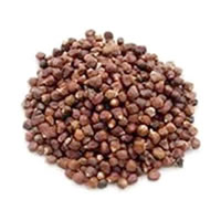 Brewer's Best® Paradise Seeds - 2 Grams /