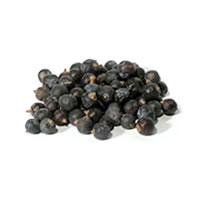 Brewer's Best® Juniper Berries - 1 oz /