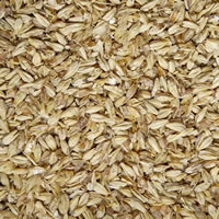 Pale Ale Malt (Briess) - 1 LB /